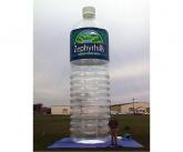 Zephyrhills Giant inflatable